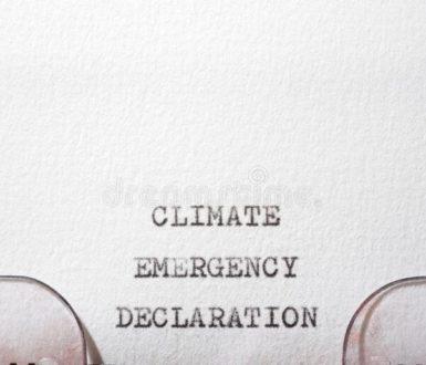 ClimateEmergencyDeclaration Phrase Written Typewriter 217367451